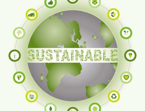 Какво е устойчивост? Какви са му компонентите?